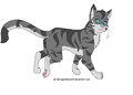 Jayfeather - warriors-novel-series photo