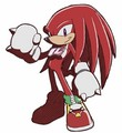 Knuckles Rides - knuckles-the-echidna photo