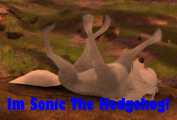 Lilly the Hedgehog?