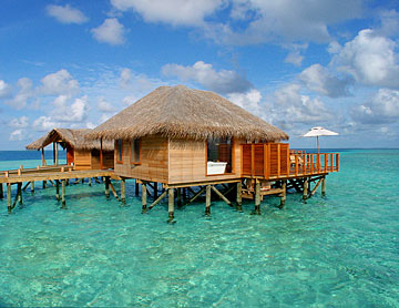 Maldives 壁纸 with a thatch entitled Maldives