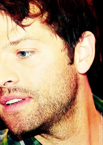 Misha O.O