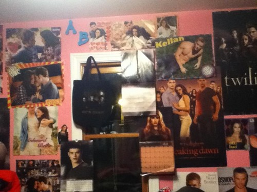My Twilight Posters :)