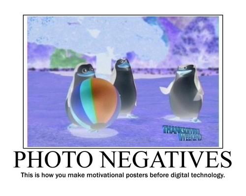 picha Negative Motivational Poster
