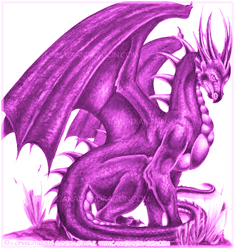 Dragons wallpaper containing a red cabbage and a radicchio entitled Pink Iz For Real Pimps