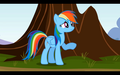 Rainbow Dash wallpapers - rainbow-dash wallpaper