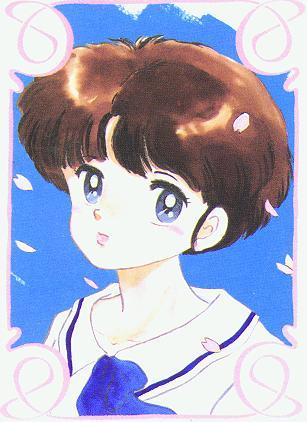 Ranma 1/2 मांगा artbook - Akane Tendo (Tankobon)