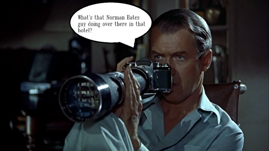 The Dynamics in Alfred Hitchcock's Rear Window and Psycho Essay
