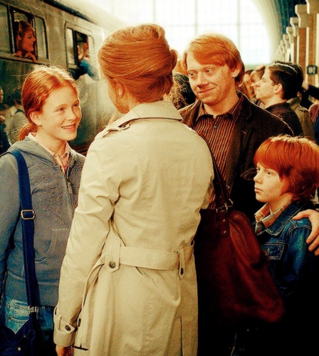 Ron and his tiny Weasley Family