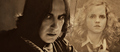 SS/HG - hermione-and-severus photo