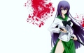 Saeko Busujima from Highschool of the dead - blindbandit92 wallpaper