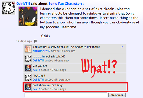 Something I Quite Do Not Enjoy Being Told - sonic-fan-characters Screencap