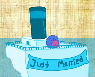 Sushi cat is just married!!!
