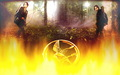 the-hunger-games - The Hunger Games Wallpaper wallpaper