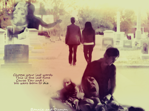 Damon & Bonnie wallpaper probably with a bather entitled We were born to die