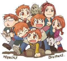 Weasley Family fanart - The Weasley Family Fan Art ...