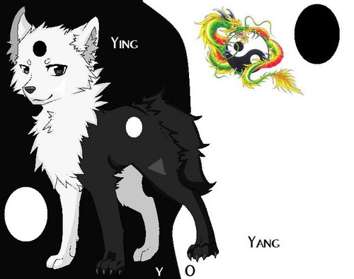 Ying Yang Yo Wölfe