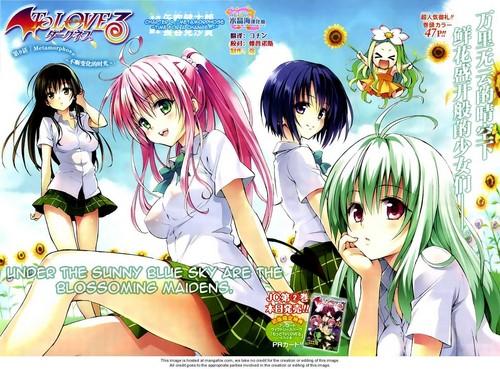 Yui,Lala,Haruna,Run