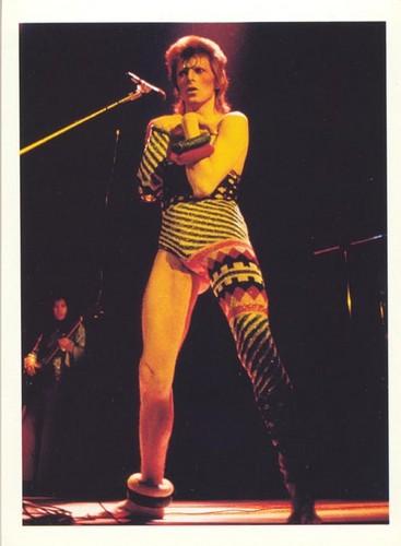 Ziggy Stardust wallpaper with a concert called Ziggy