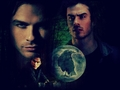 damon - damon-salvatore wallpaper