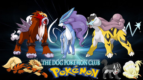 dog pokemon club banner