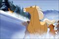jhg - spirit-stallion-of-the-cimarron photo