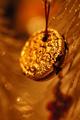 the holy golden oreo