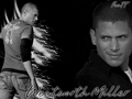 wentworthwallpaper - wentworth-miller wallpaper