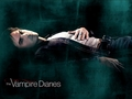yummy - damon-salvatore wallpaper