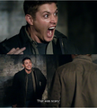 """That was scary!"" - dean-winchester photo"
