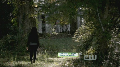 3x10 The New Deal HD Screencaps - the-vampire-diaries-tv-show Screencap