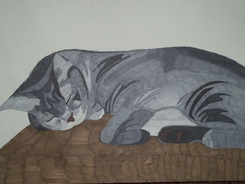 A drawing of my Cat