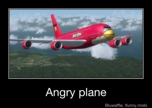 Angry Birds Funnies!