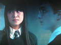 Cho Chang and Harry Potter - cho-chang photo