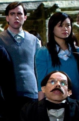 Cho Chang with Neville Longbottom and Filius Flitwick