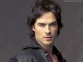 damon-salvatore - Damon Salvatore  wallpaper