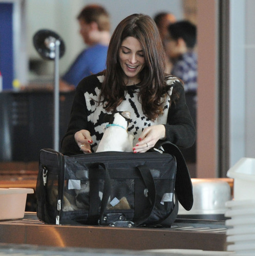 Departing from JFK Airport, New York - ashley-greene Photo