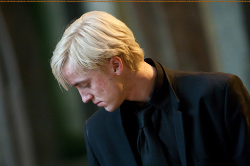 Drago Malfoy karatasi la kupamba ukuta probably with a business suit called Draco Malfoy