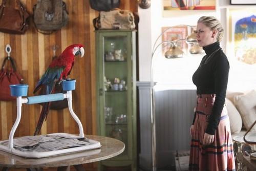 Episode 2.11 - Meet the Parrots - Promotional 照片