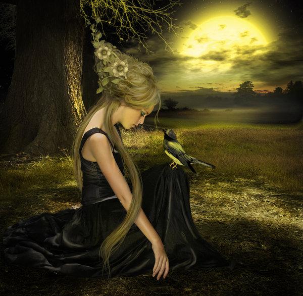 Fantasy Art Photo