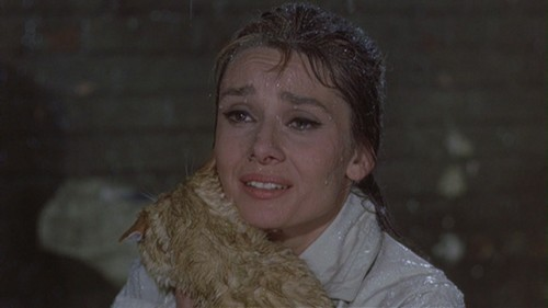 """parejas de películas fondo de pantalla possibly with a pelaje, piel capa entitled acebo & Paul in """"Breakfast at Tiffany's"""""""