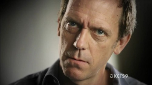 Hugh Laurie wallpaper containing a portrait titled Hugh laurie in primetime