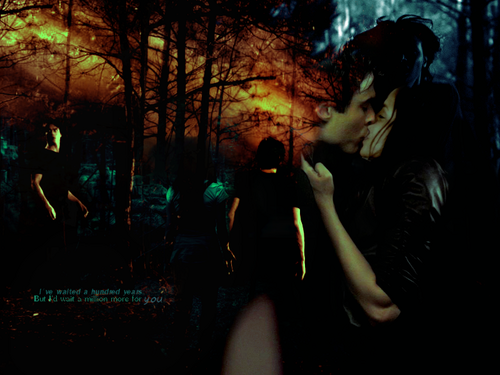 Damon & Bonnie wallpaper with a concert titled I've waited a hundred years for you