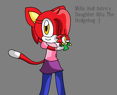 Milla The Cat And Rita The Hegdehog