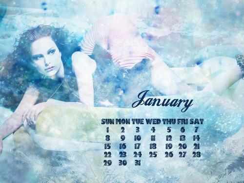NP.COM Calendar > January