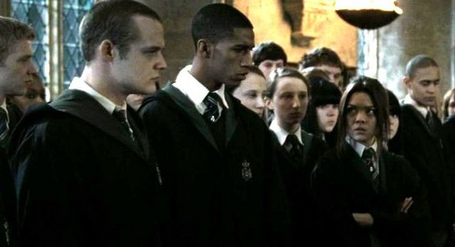 Pansy Parkinson and Slytherins