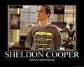 Sheldon Cooper