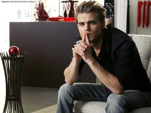 Stefan Salvatore wallpaper possibly containing a living room, a drawing room, and a business suit entitled Stefan wallpaper ✯