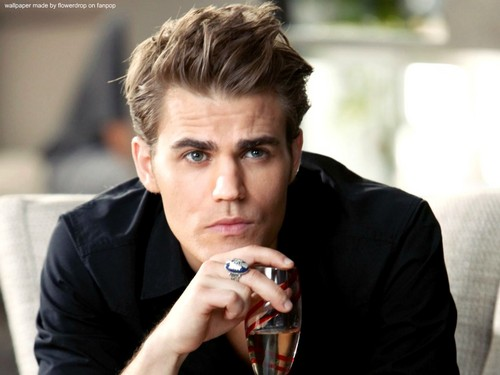 Stefan Salvatore wallpaper probably containing a business suit titled Stefan wallpaper ✯