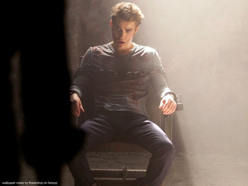 Stefan Salvatore wallpaper containing a hip boot, a well dressed person, and tights entitled Stefan wallpaper ✯