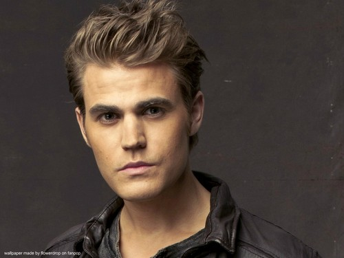 Stefan Salvatore wallpaper possibly containing a portrait titled Stefan Wallpaper ✯